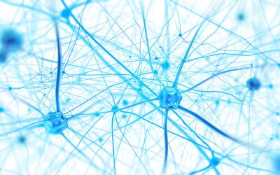 First direct evidence of neuroplastic changes following brainwave training